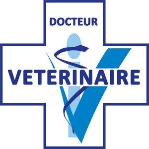 Clinique Vétérinaire Circée